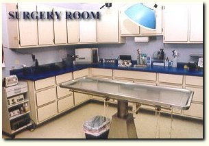 a clean surgery room with medications and instruments is a necessity